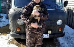 Судебный пристав спас замерзающего щенка в Забайкалье