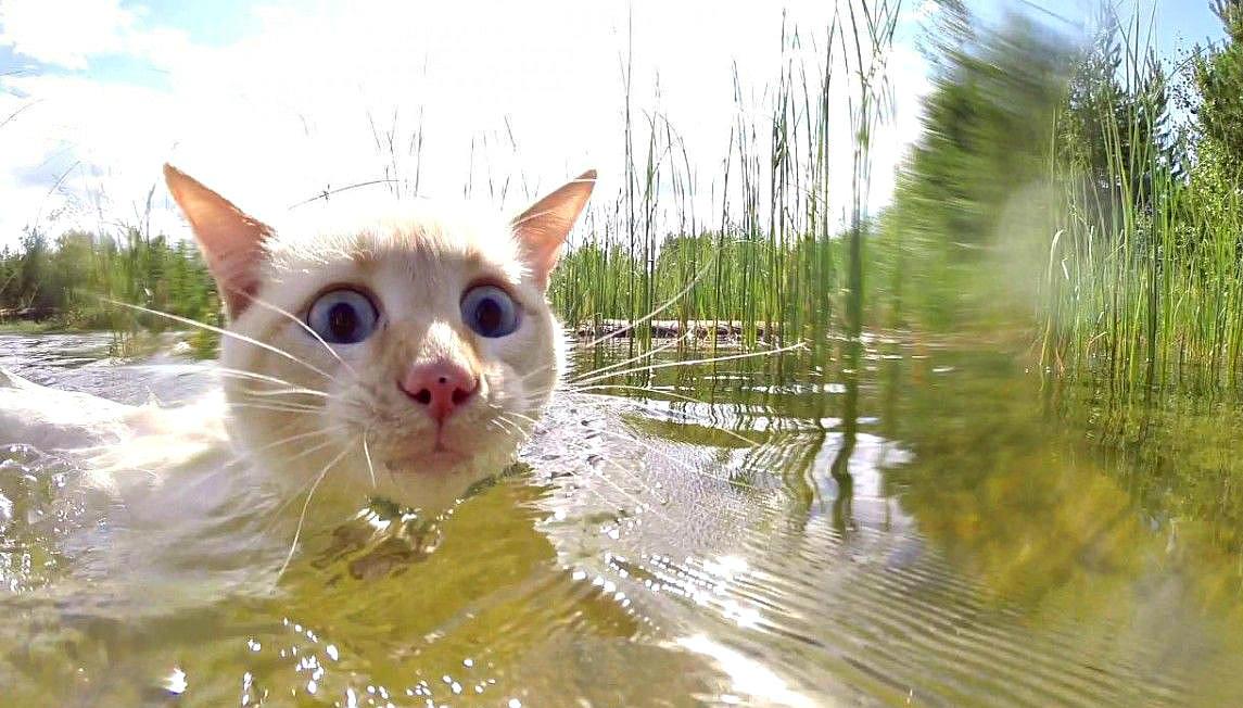 Вода в Читинке продолжает прибывать