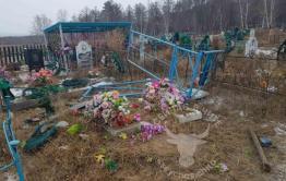 Коровы разрушили могилы на кладбище в селе Забайкалья