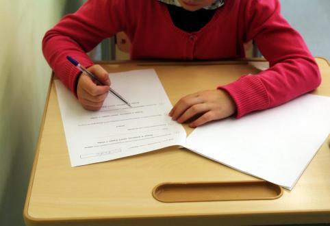 В комитете образования Читы опровергли взаимосвязь между митингом и проверочными работами по русскому языку