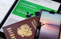 Цифровые пропуска отменены в Забайкалье