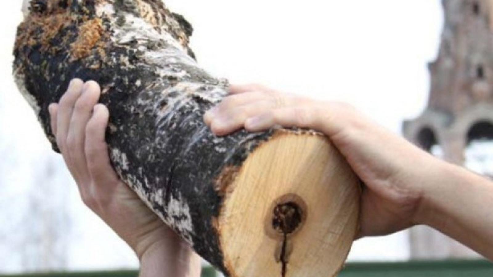 Приговор хилокским душегубам, убившим двух собутыльников поленом: 26 лет строго режима на двоих
