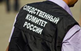 Следователи проверят информацию СМИ о бездомной женщине из Борзинского района