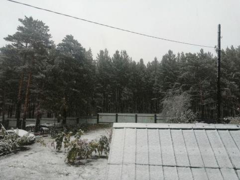 Погода порадует читинцев теплыми выходными