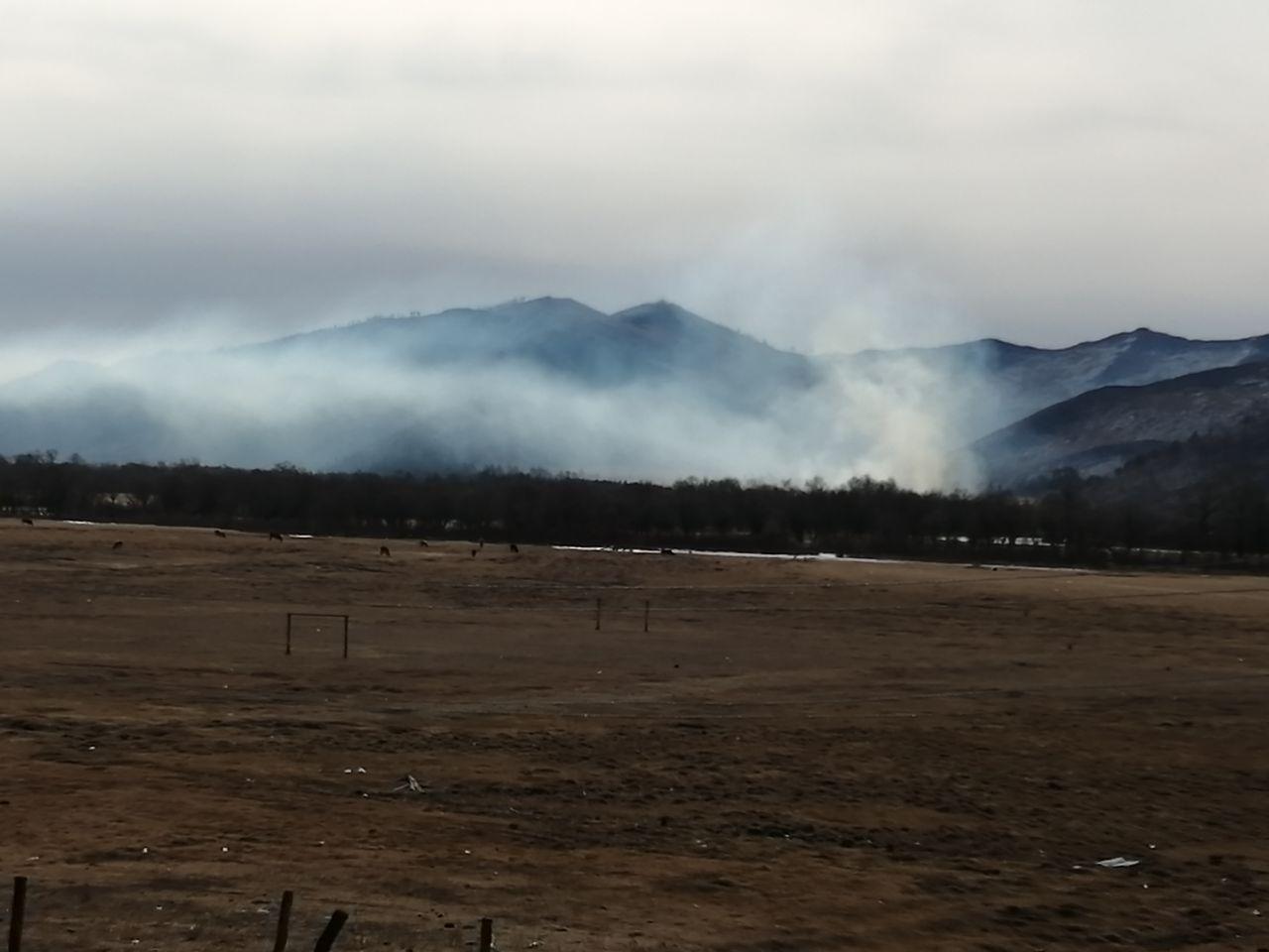 Пожар в долине реки Кыринка был контролируемым отжигом — глава района
