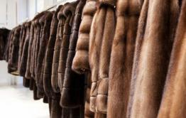 В Забайкалье мужчина украл 20 мутоновых шуб с выставки