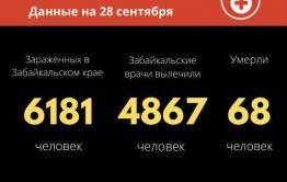 Более 80 человек заболели коронавирусом за сутки в Забайкалье