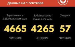 Еще 33 человека заразились коронавирусом за сутки в Забайкалье. Столько же вылечилось.