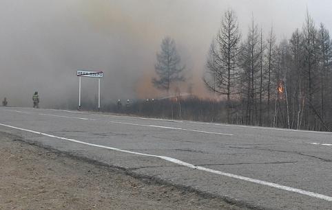 Костер, не потушенный рыбаками, стал причиной лесного пожара в Забайкалье