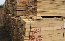 Забайкалец вывез за границу лесоматериалы почти на 40 млн рублей. Его ждет колония и штраф