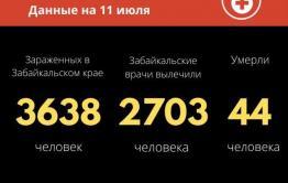 Коронавирус в Забайкалье: 43 новых случая за сутки