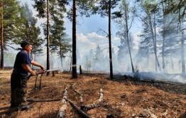 В Забайкалье действуют шесть лесных пожаров