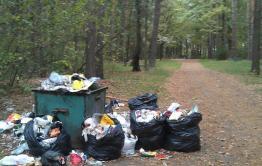 Читинская общественница предложила незамедлительно начать раздельный сбор мусора