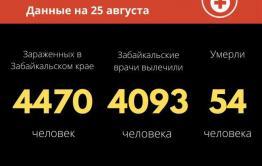 В Забайкалье зарегистрировано 24 новых случая заражения коронавирусом