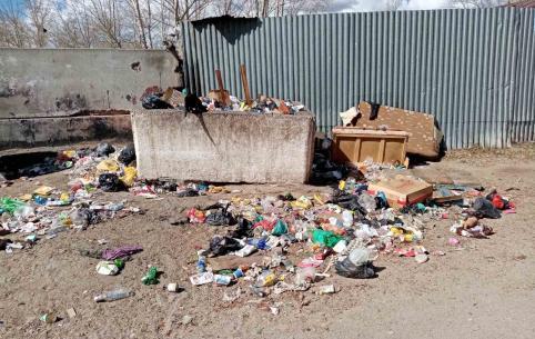 Жители утопающей в мусоре Ясной сняли видео о провальной работе «Олерон+»