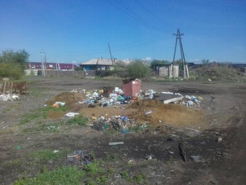 Читинец пожаловался на заваленную мусором улицу Олекминскую