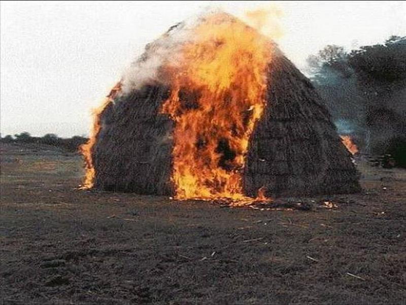 Житель Забайкалья получил 280 часов обязательных работ за лесной пожар с крупным ущербом