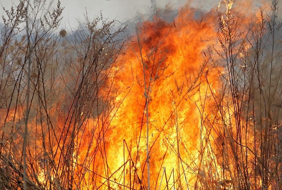 В Забайкалье прокуратура требует взыскать с «Трансэнерго» затраты на тушение пожара