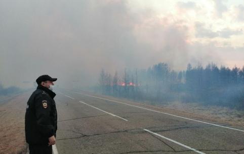 Причиной одного из пожаров у Ивано-Арахлейских озер стал обрыв линии электропередач
