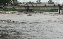 Шилка подтопила дворы в селах Сретенского района