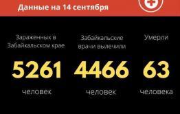 Еще 66 новых больных коронавирусом выявили за сутки в Забайкалье