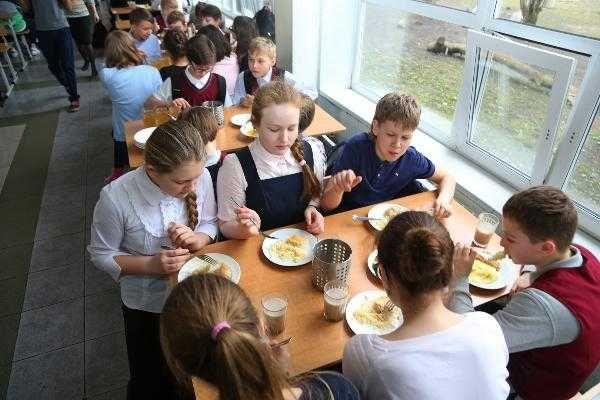 Совфед одобрил законопроект о бесплатном горячем питании школьников в младших классах