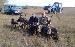 Напавший 30 сентября в Дульдургинском районе медведь переломал мужчине челюсть