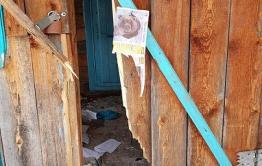 Медведь разнес кордон в нацпарке «Чикой»