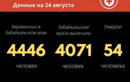 В Забайкалье от коронавируса скончалась 81-летняя женщина