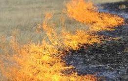В семи районах Забайкалья открыли пожароопасный сезон