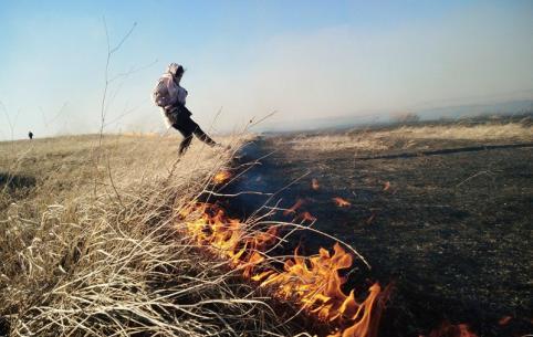 Жители Ковылей поблагодарили двух местных парней, делавших опашку во время пожаров