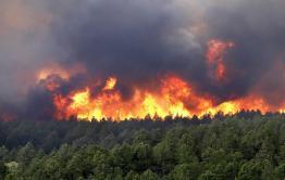 Ветер не дает тушить пожар в районе Забайкальска