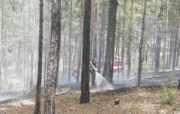 Жители Атамановки отстояли свой поселок и лес от пожара