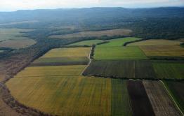 В Минвостокразвития хотят изменить закон о «дальневосточном гектаре»