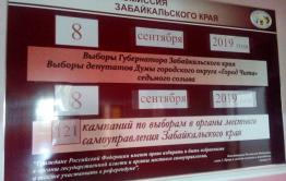 Бюллетени на выборах губернатора Забайкалья будут багулового цвета