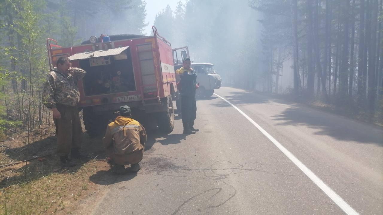 Лесной пожар тушат в районе Молоковки