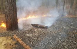 Подростки устроили лесной пожар возле забайкальского села. Видео.