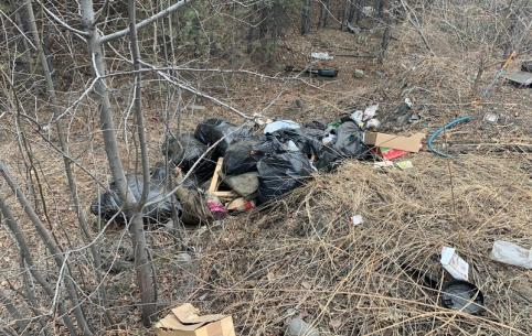 Читинец заснял грузовик, сваливший мусор в лесу
