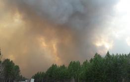 Съемочная и репортерская группы «Вечорки» экстренно выехали в Лесной Городок — из-за лесного пожара там объявлена эвакуация