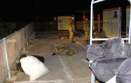 Сотрудник военной полиции, сливший фото с места расстрела в Горном, уволен — источник