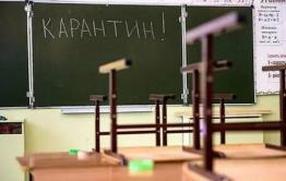 Читинских школьников отправили на карантин