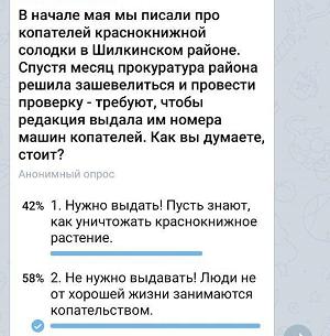 Читатели «Вечорки» проголосовали против разглашения данных копателей солодки в Шилкинском районе