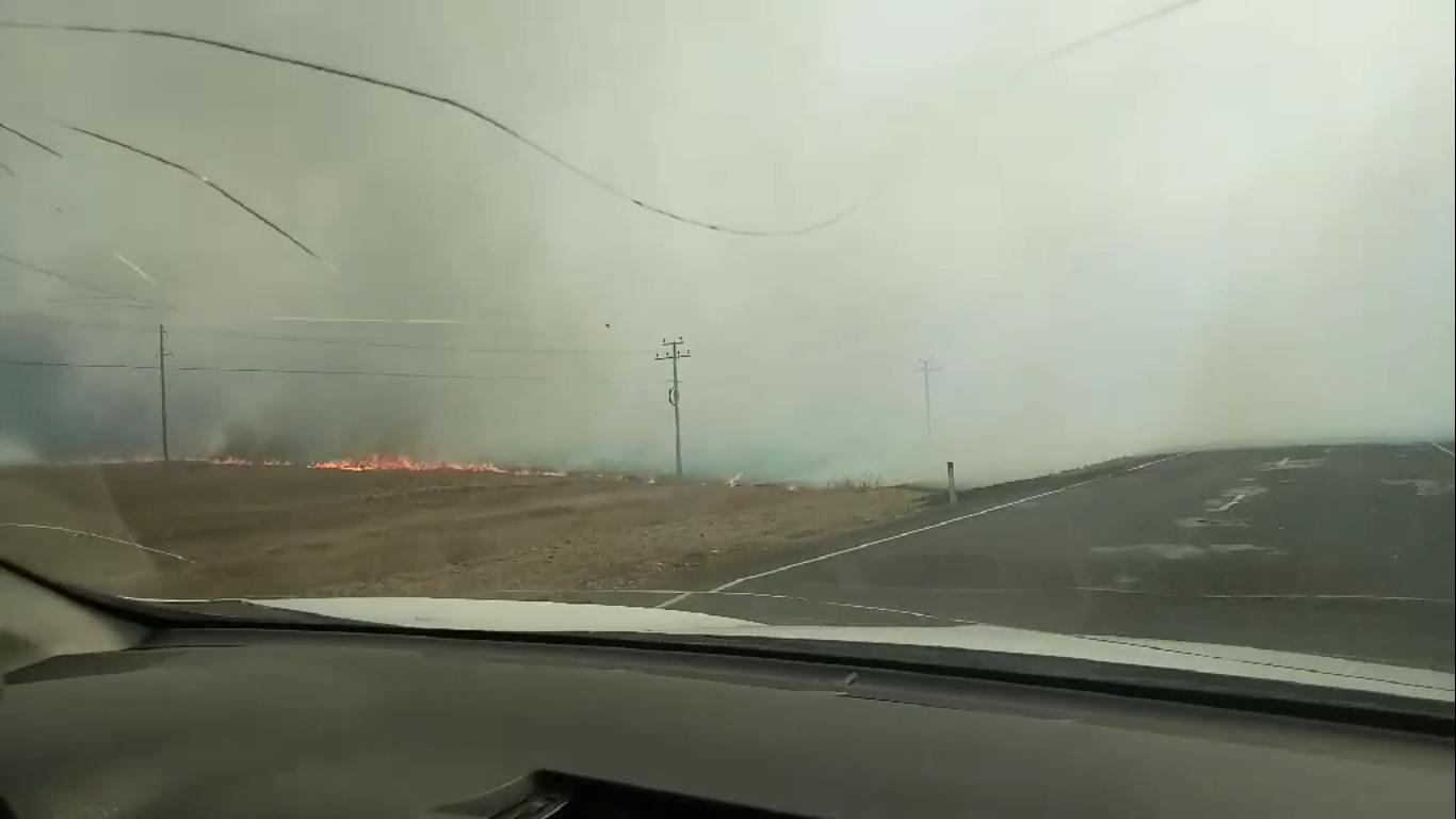 Степной пожар потушили неподалеку от Забайкальска (видео)
