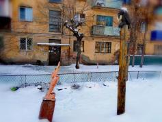Деревянная инсталляция на басенную тему Крылова. 12 февраля 2021 год. Чита, двор дома по улице Шилова 4а.