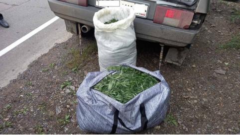 В Карымском районе мужчина перевозил в багажнике более 5 кг марихуаны