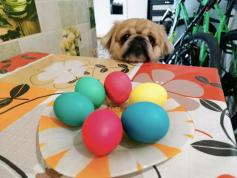 Со светлым праздником Пасхи! Фото Эдуарда Петрищева