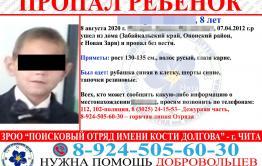 Забайкальская прокуратура проведет проверку по факту пропажи 8-летнего мальчика