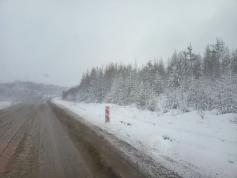 Майский снег в Забайкалье. Где-то на трассе Амур. 7.05.2021.