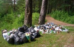 В Дровяной нет бани, а лес вокруг поселка завалили мусором