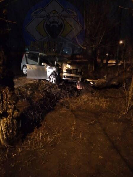 Читинец врезался в дерево на Набережной